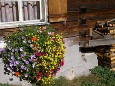 Familienferien in Vorarlberg